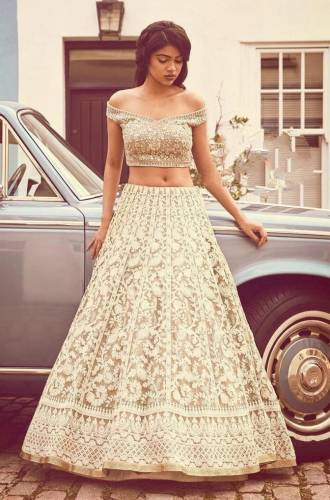 Beautiful Chiku Colored Net With Embroidered Work Lehenga Choli